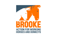 Brooke Action for Working Horses & Donkeys